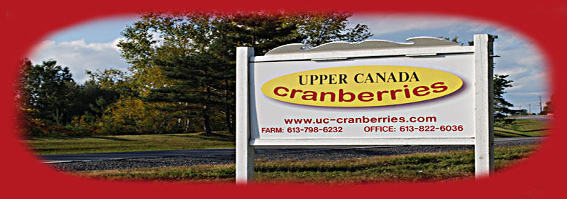 Ottawa's only cranberry grower